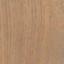 ImpactOilColor Papiro